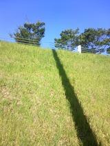 そびえ立つ影