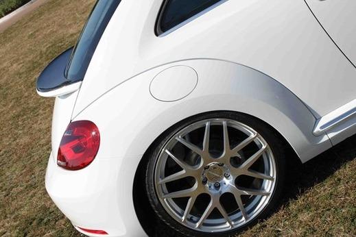 ap_beetle_rear03