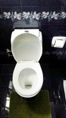 トルコのトイレ