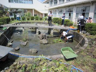 中庭の池_大掃除