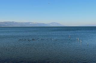 イズニック湖