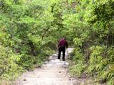 三草山-初老の男性