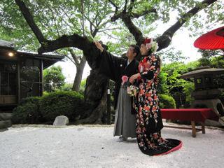千恵美結婚式
