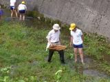 川の汚れを探ってみよう