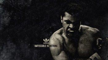 muhammad_ali_boxer_sports_adidas_93926_3840x2160[1]