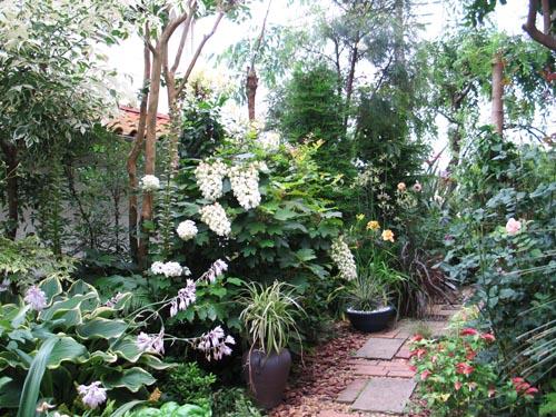 garden628a