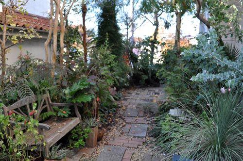 garden1119b_ms