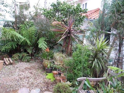 garden404c_ms