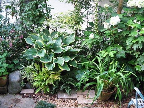 garden612
