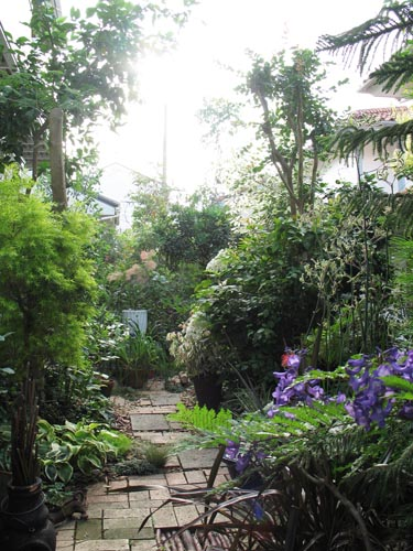 garden619b