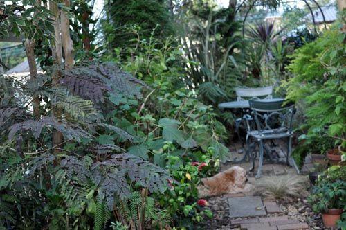 garden1006b_ms