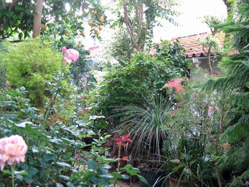 garden602b