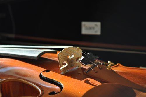 violin1010_ms