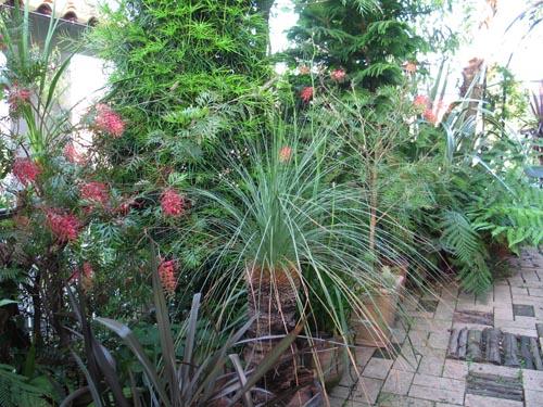 garden602c