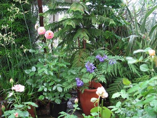 garden621