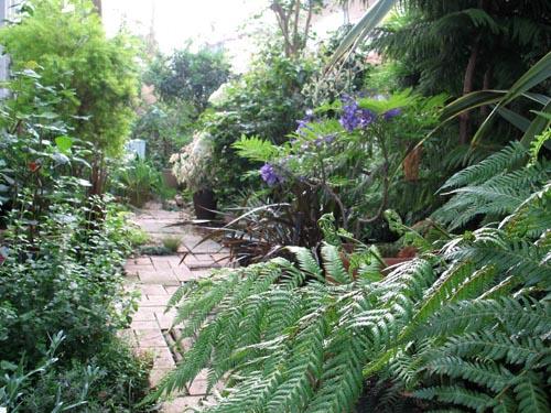 garden619c