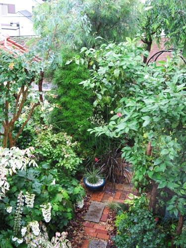 garden621c