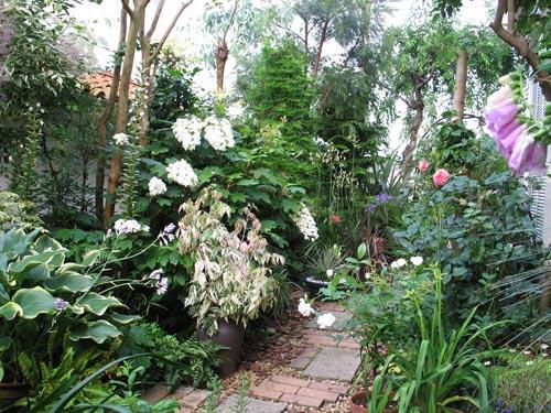 garden619a