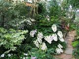 garden624c