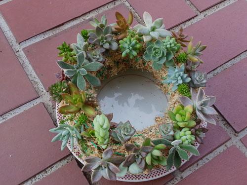 wreath615_ms