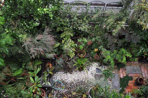 garden1030b_ms