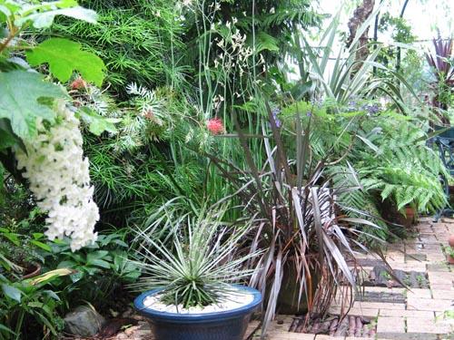 garden617a