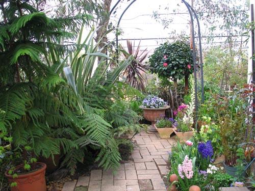 garden405b
