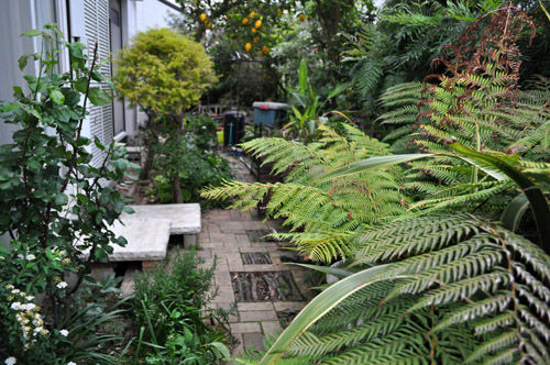 garden507_ms