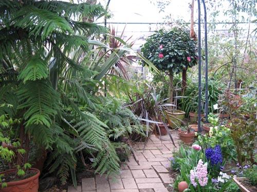 garden405a