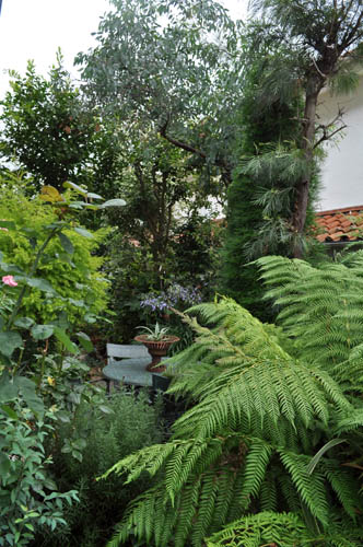 garden719b_ms