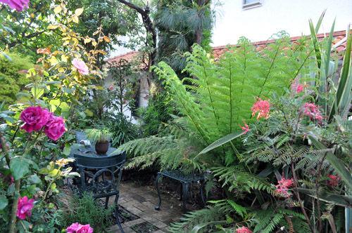 garden528_ms