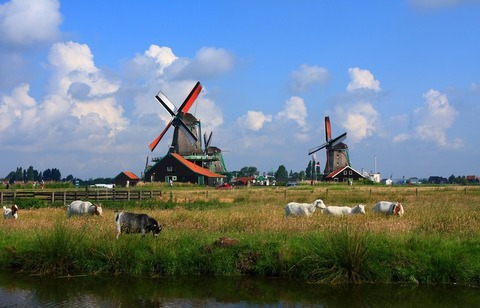 Beautiful and quiet Zaanse Schans in the Netherlands