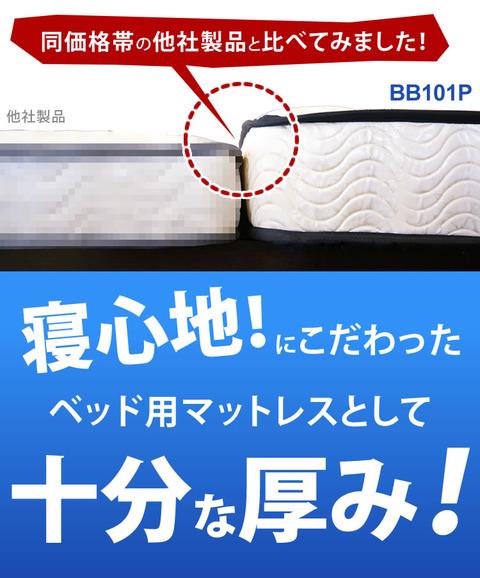 0010-bb101p-b-5