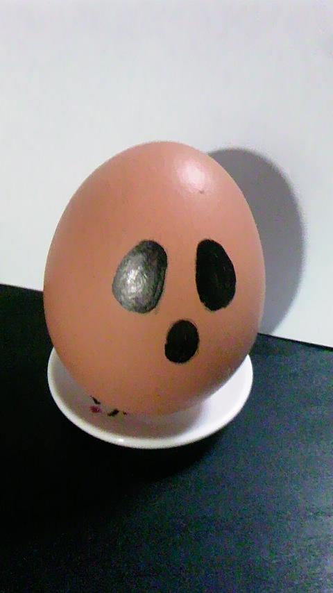 63_01卵