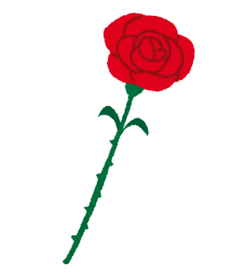 chichinohi_rose_red