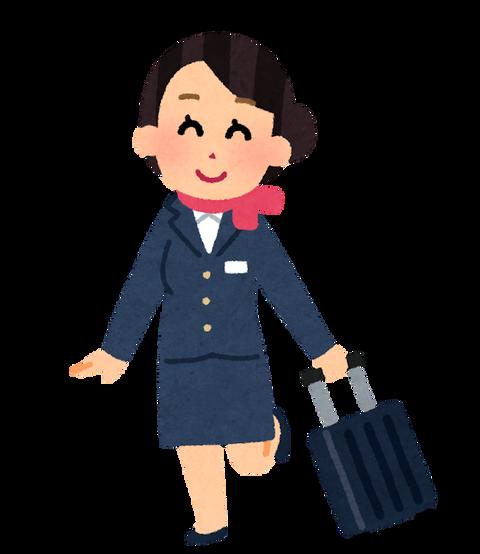job_ca_carrycase