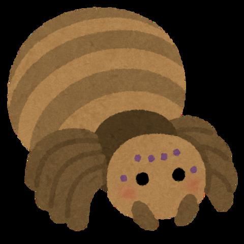 bug_character_kumo_brown