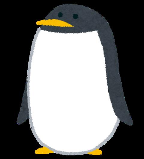 animal_penguin