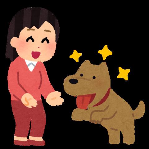 pet_natsukareru_dog_woman