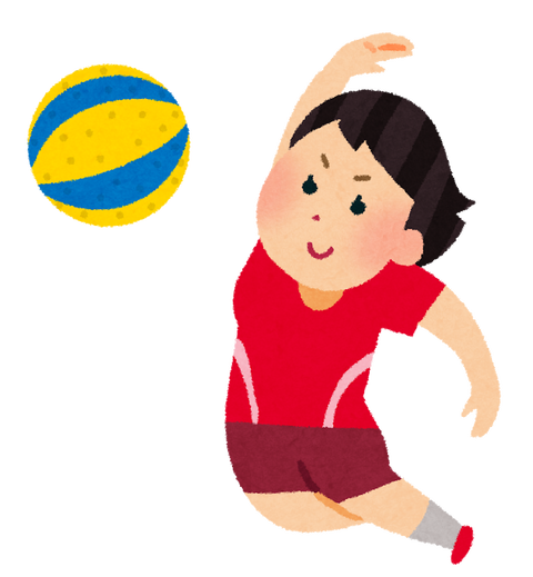 sports_soft_volleyball-1