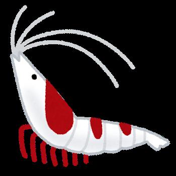 fish_ebi_red_bee_shrimp