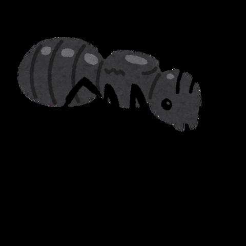bug_jouou_ari