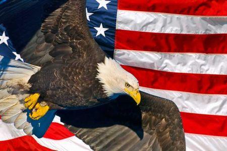 american-eagle-day_120612
