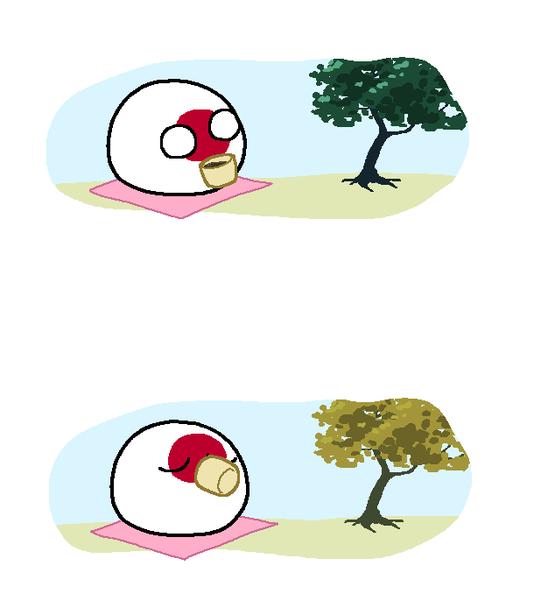 日本の紅葉 インドネシアの焼き畑 海外の反応