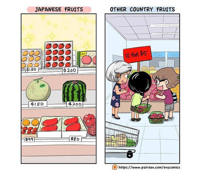 My-30-comics-that-shows-how-special-Japan-is-5cfe0537032a8__700