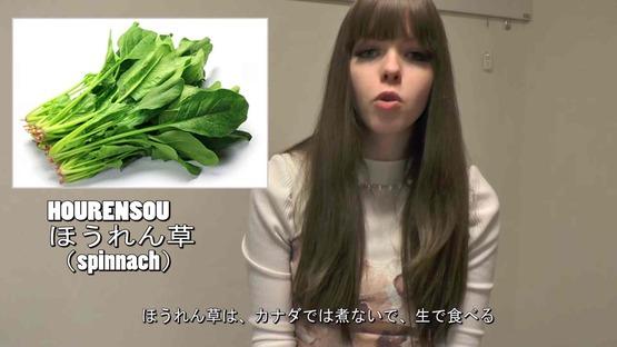 日本の野菜事情 海外の反応 (11)
