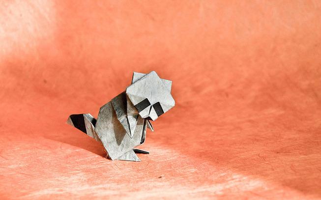 origami-gonzalo-garcia-calvo-75-57fb562fcfdd3__880