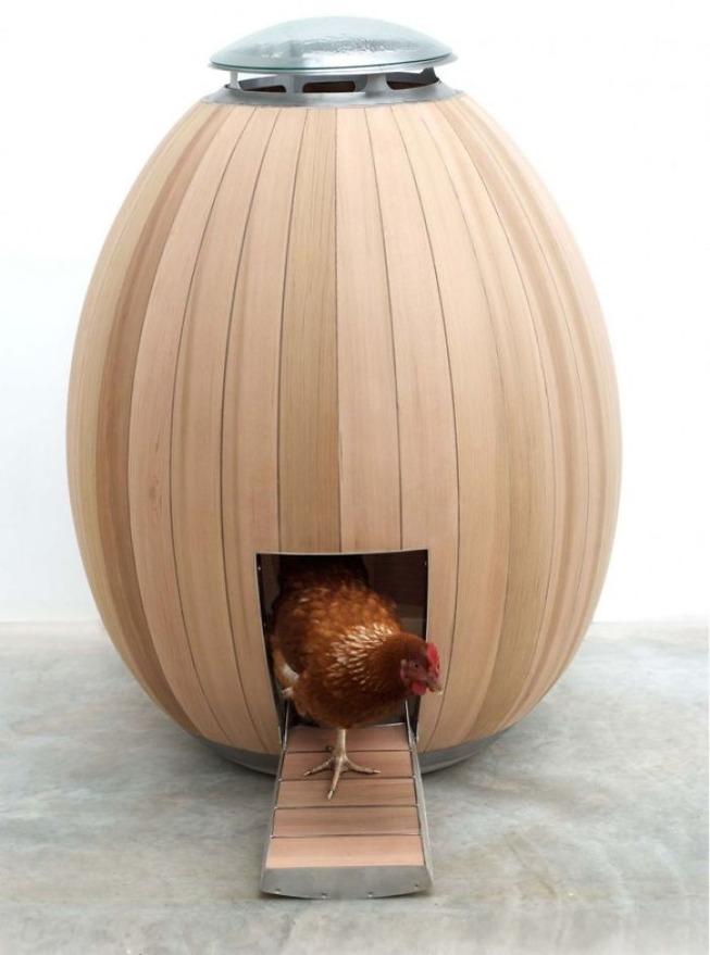 creative-chicken-coops-designs-22-5f0d9107b49ba__700