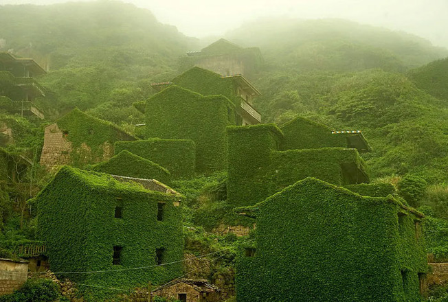 nature-reclaiming-civilization-500-603cee16b8f29__700