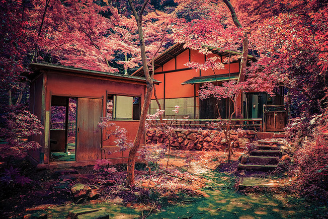 child-dream-and-photograph-Japans-Beauty